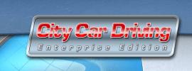 Wspierane gry - City Car Driving Enterprise Edition
